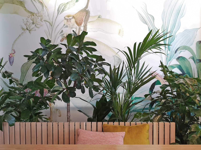 groen geluk plantzaam